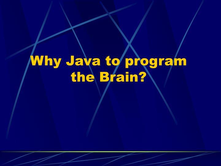 Why Java to program the Brain?