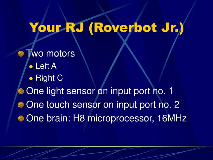 Your RJ (Roverbot Jr.)