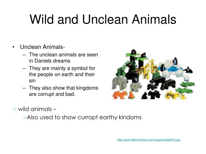 Wild and Unclean Animals
