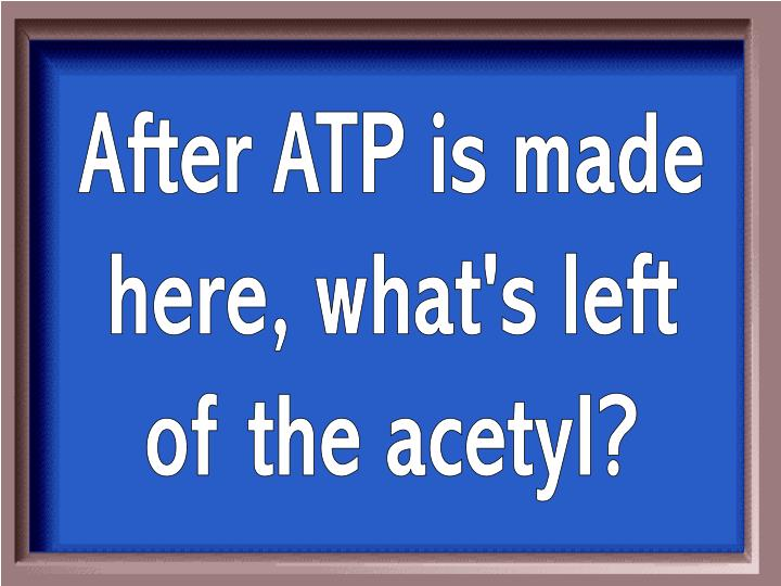 After ATP is made