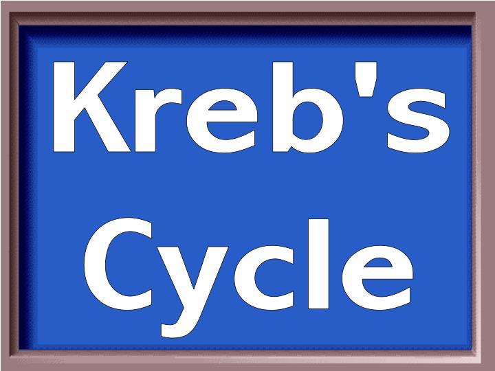 Kreb's