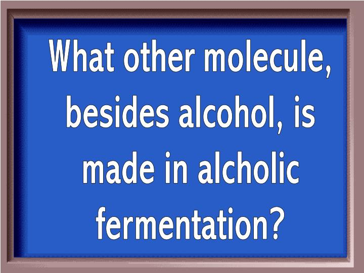 What other molecule,