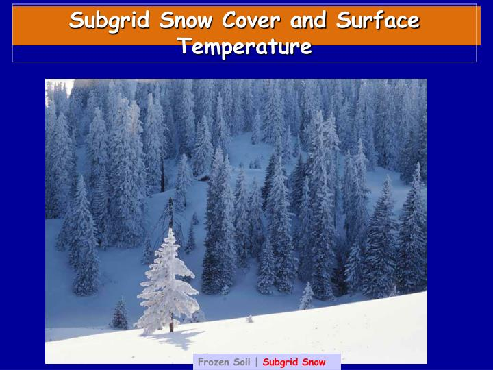 Subgrid Snow Cover and Surface Temperature