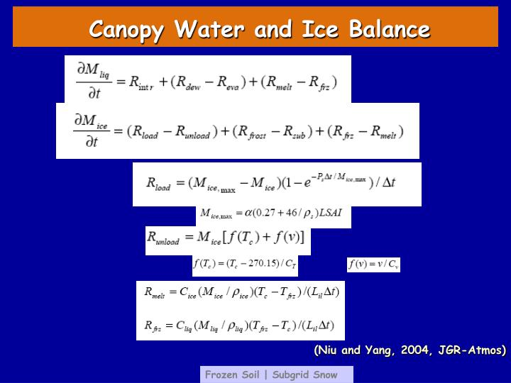 Canopy Water and Ice Balance