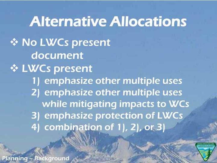 Alternative Allocations
