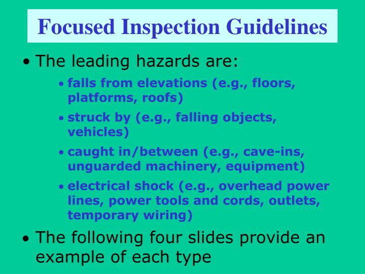 Focused Inspection Guidelines