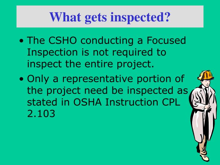 What gets inspected?