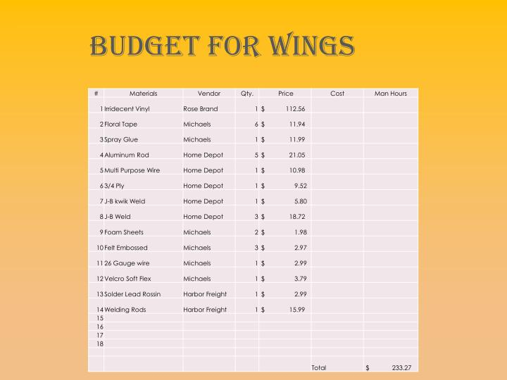 Budget For Wings
