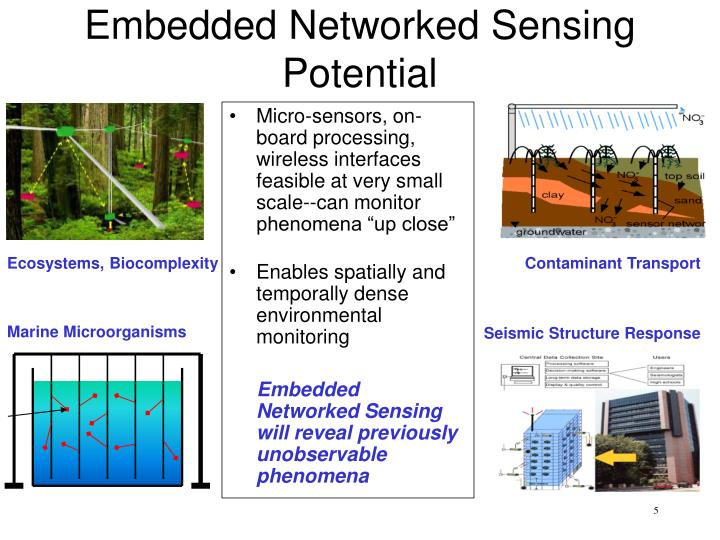 Embedded Networked Sensing Potential