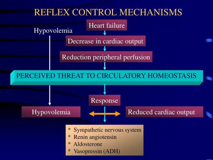 REFLEX CONTROL MECHANISMS