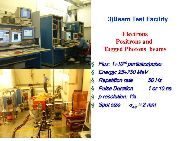 3)Beam Test Facility