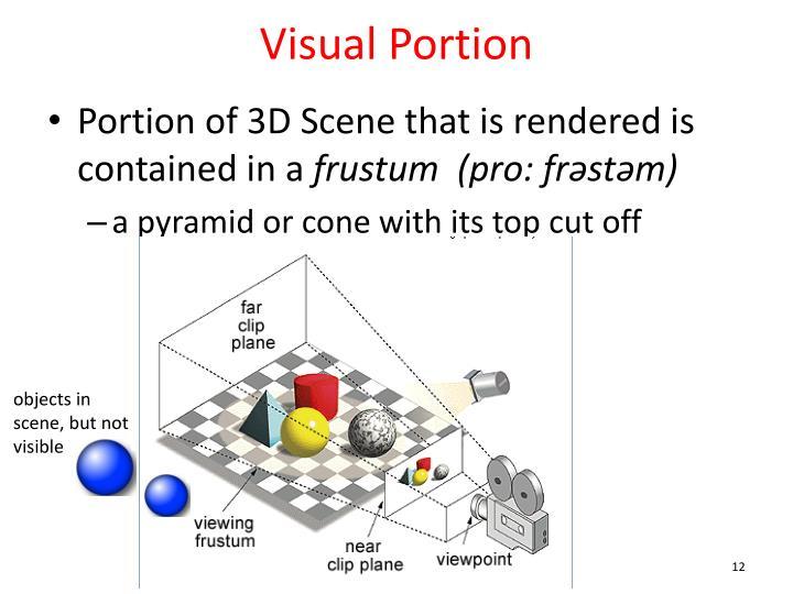 Visual Portion