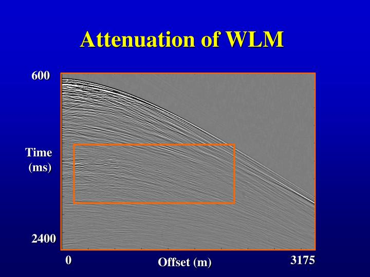 Attenuation of WLM