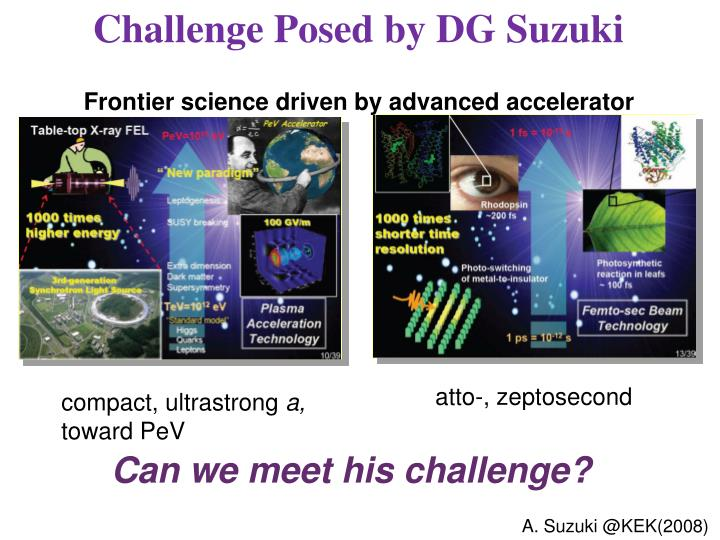 Challenge Posed by DG Suzuki