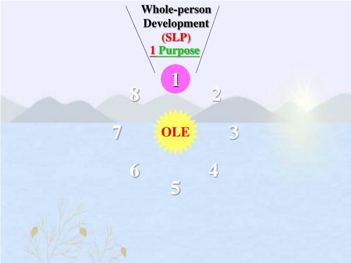 Whole-person