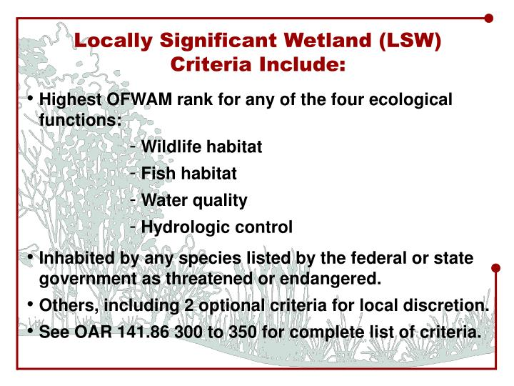 Locally Significant Wetland (LSW)