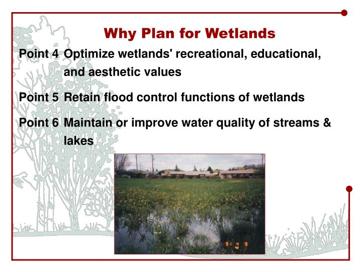 Why Plan for Wetlands