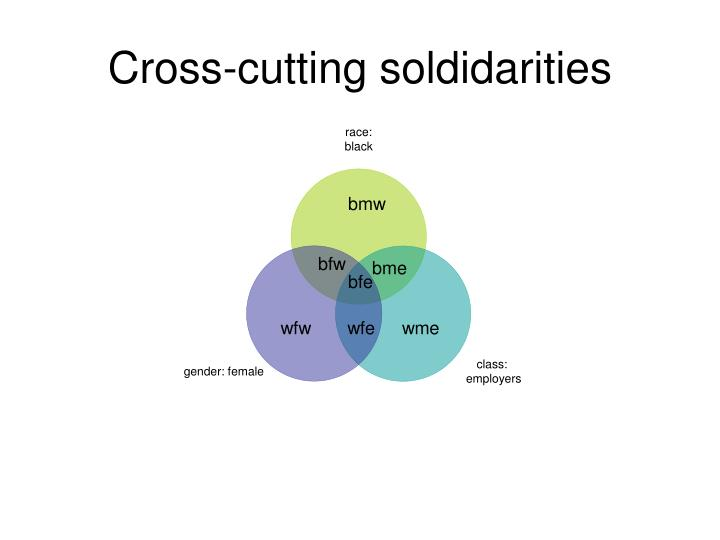 Cross-cutting soldidarities