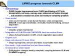 lmwg progress towards clm41