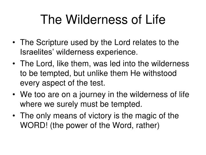 The Wilderness of Life