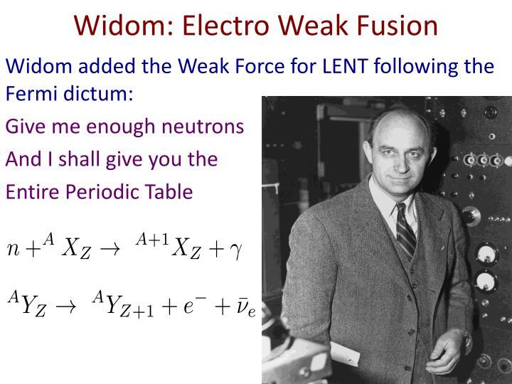 Widom: Electro Weak Fusion