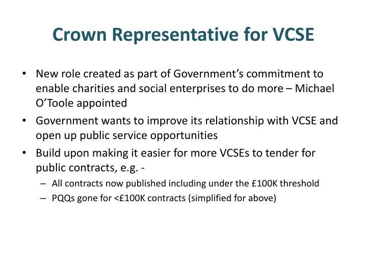 Crown Representative for VCSE