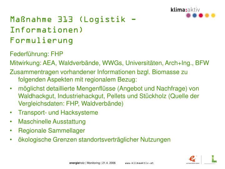 Maßnahme 313 (Logistik - Informationen)