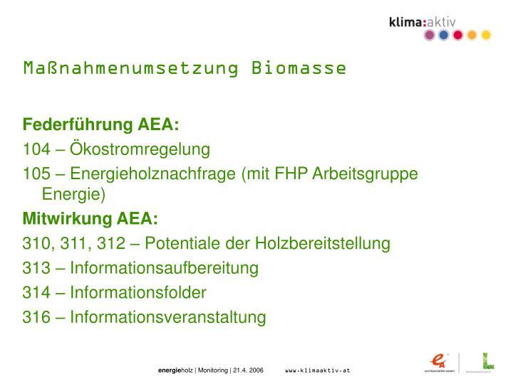 Maßnahmenumsetzung Biomasse