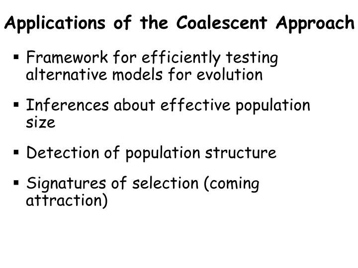 Applications of the Coalescent Approach
