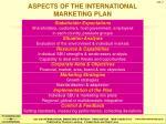aspects of the international marketing plan