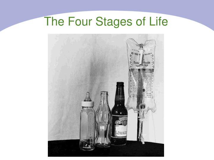 The Four Stages of Life