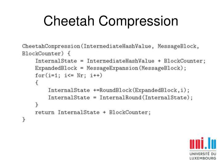 Cheetah Compression