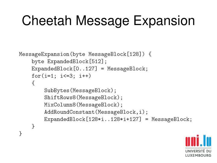 Cheetah Message Expansion