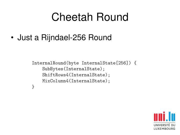 Cheetah Round