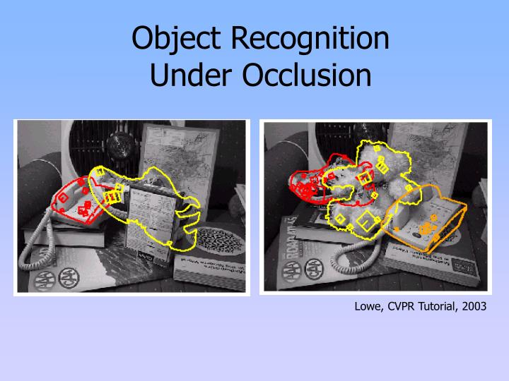 Object recognition under occlusion