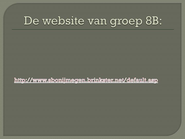 De website van groep 8B: