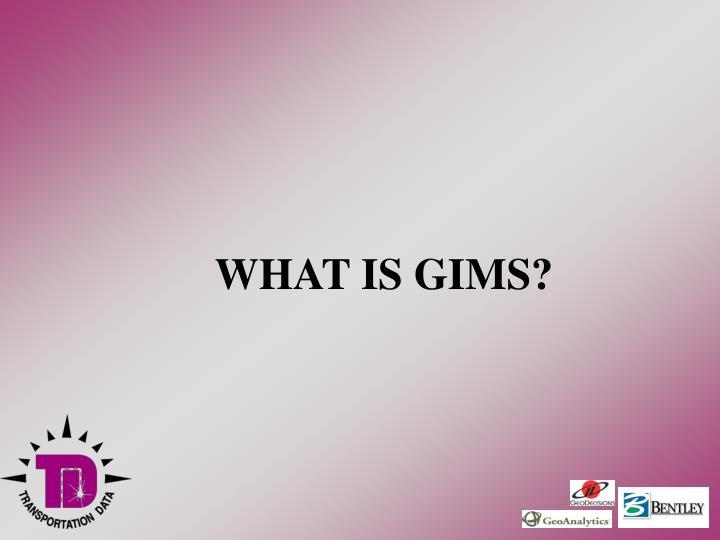 What is gims
