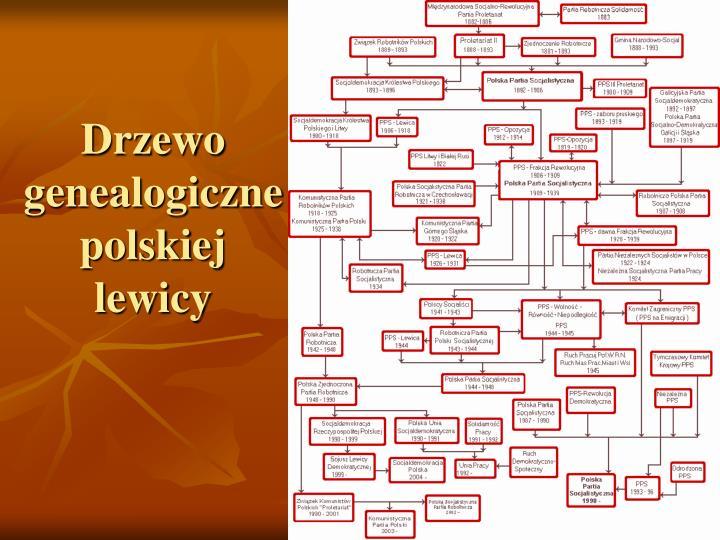 Drzewo genealogiczne polskiej lewicy