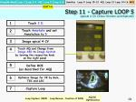 step 11 capture loop 5 apical 4 cv colour kinesis unenhanced