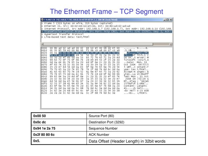 The Ethernet Frame – TCP Segment