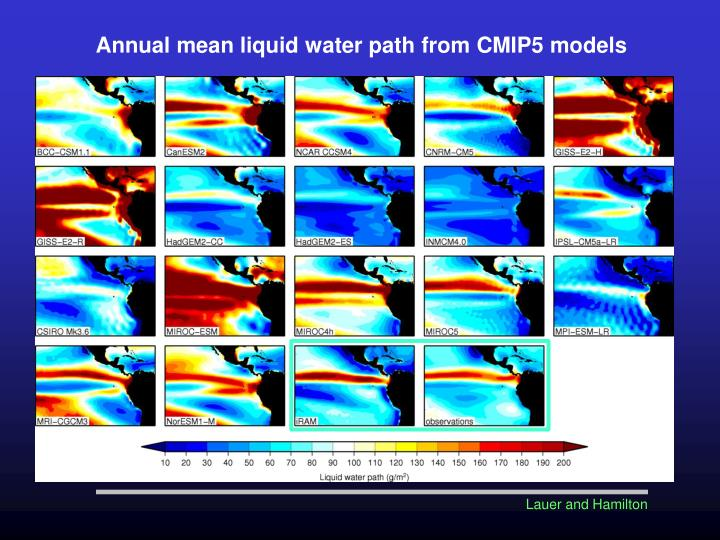 Annual mean liquid water path from