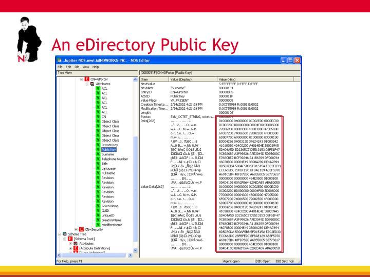 An eDirectory Public Key