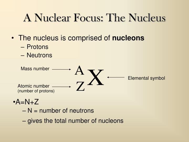 A Nuclear Focus: The Nucleus