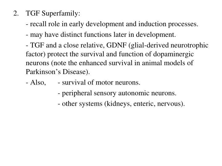 TGF Superfamily: