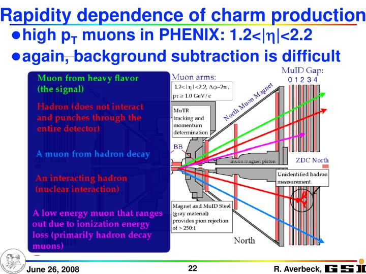 Rapidity dependence of charm production