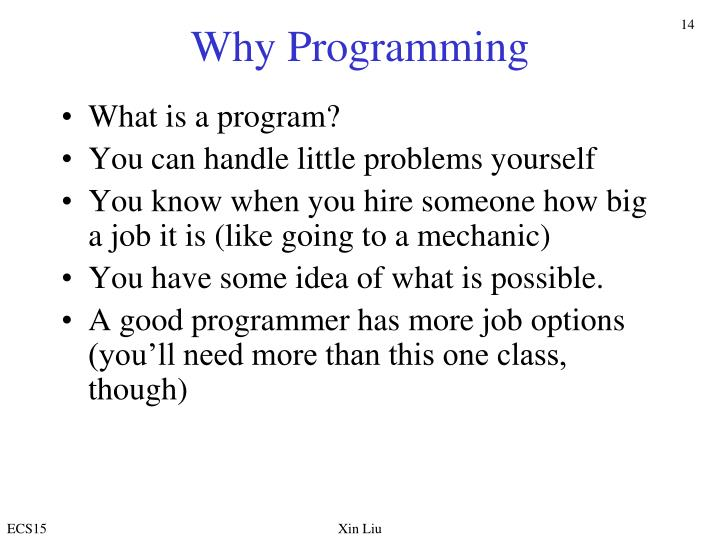 Why Programming