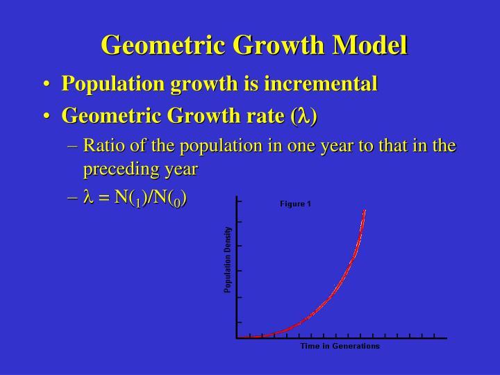 Geometric Growth Model