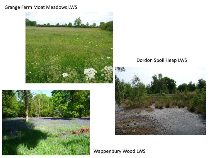 Grange Farm Moat Meadows LWS