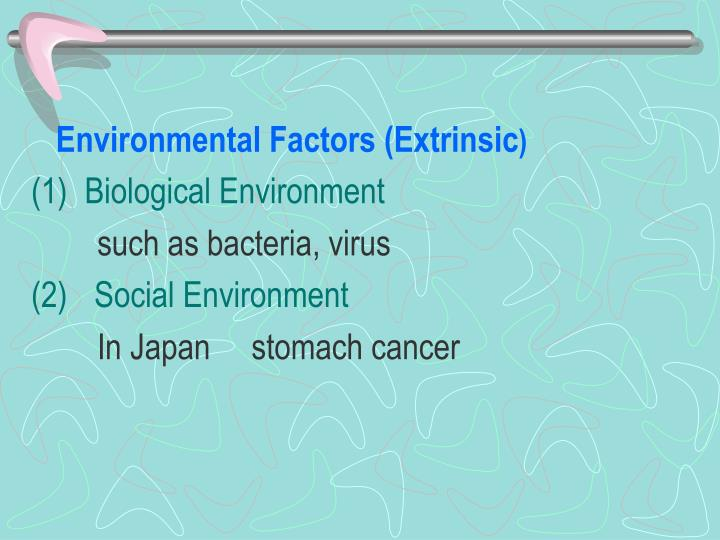 Environmental Factors (Extrinsic