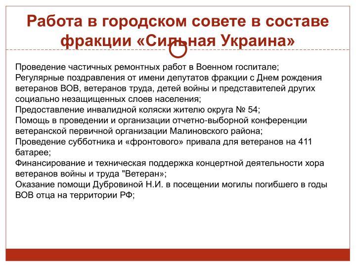 Работа в городском совете в составе фракции «Сильная Украина»